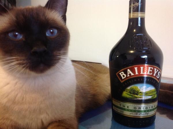 Baileys!