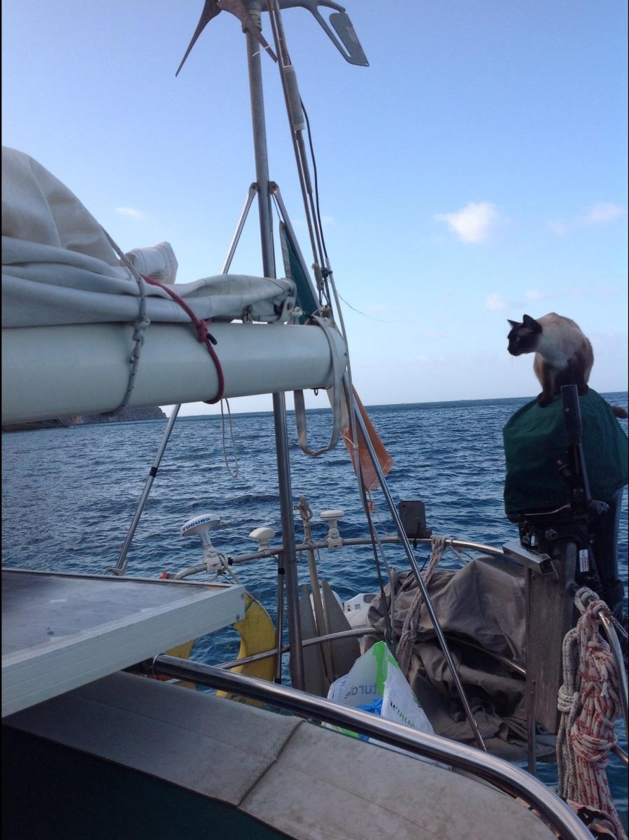 Sail repair.