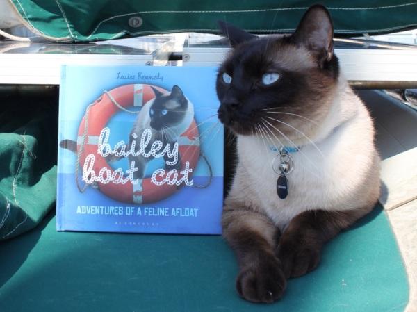 Bailey's book!