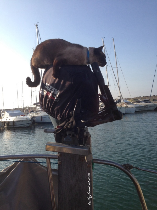 On top of the outboard