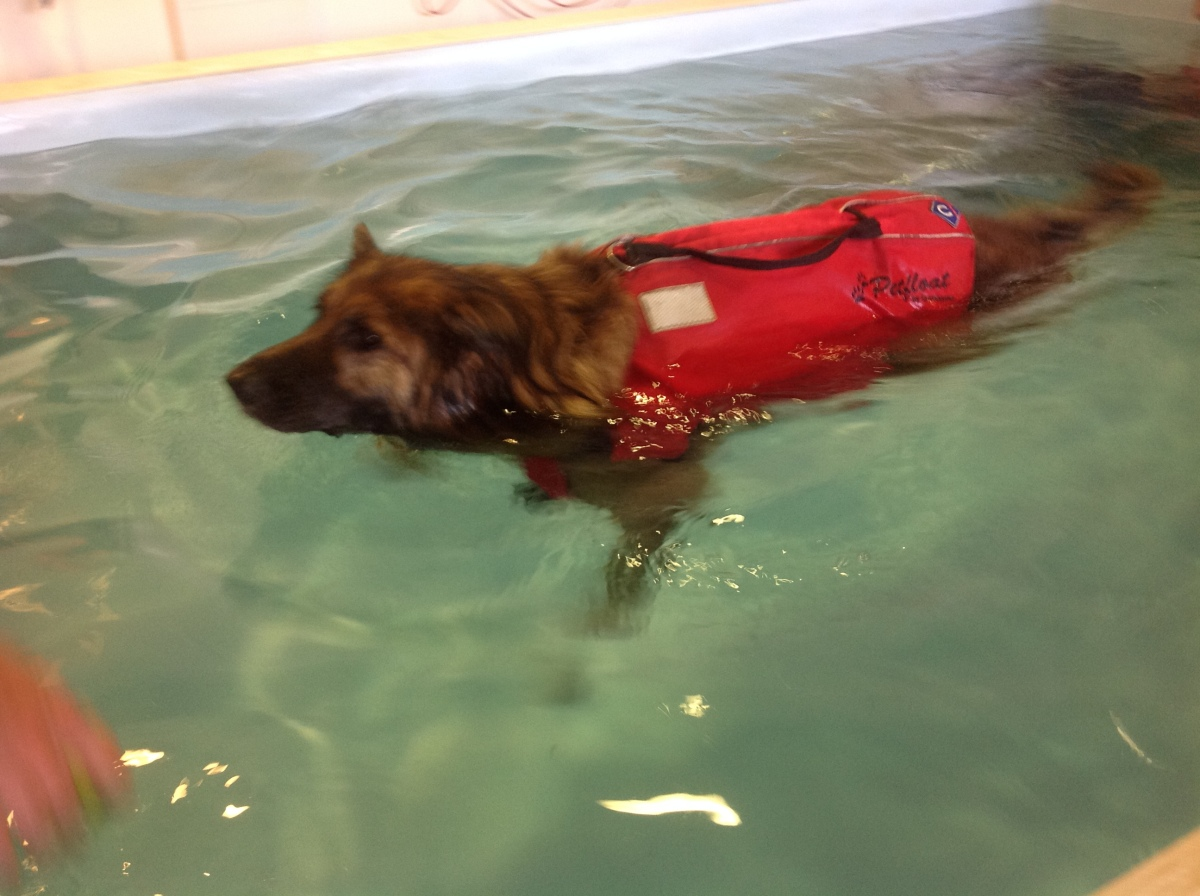 Mabel's Hydrotherapy Treatment