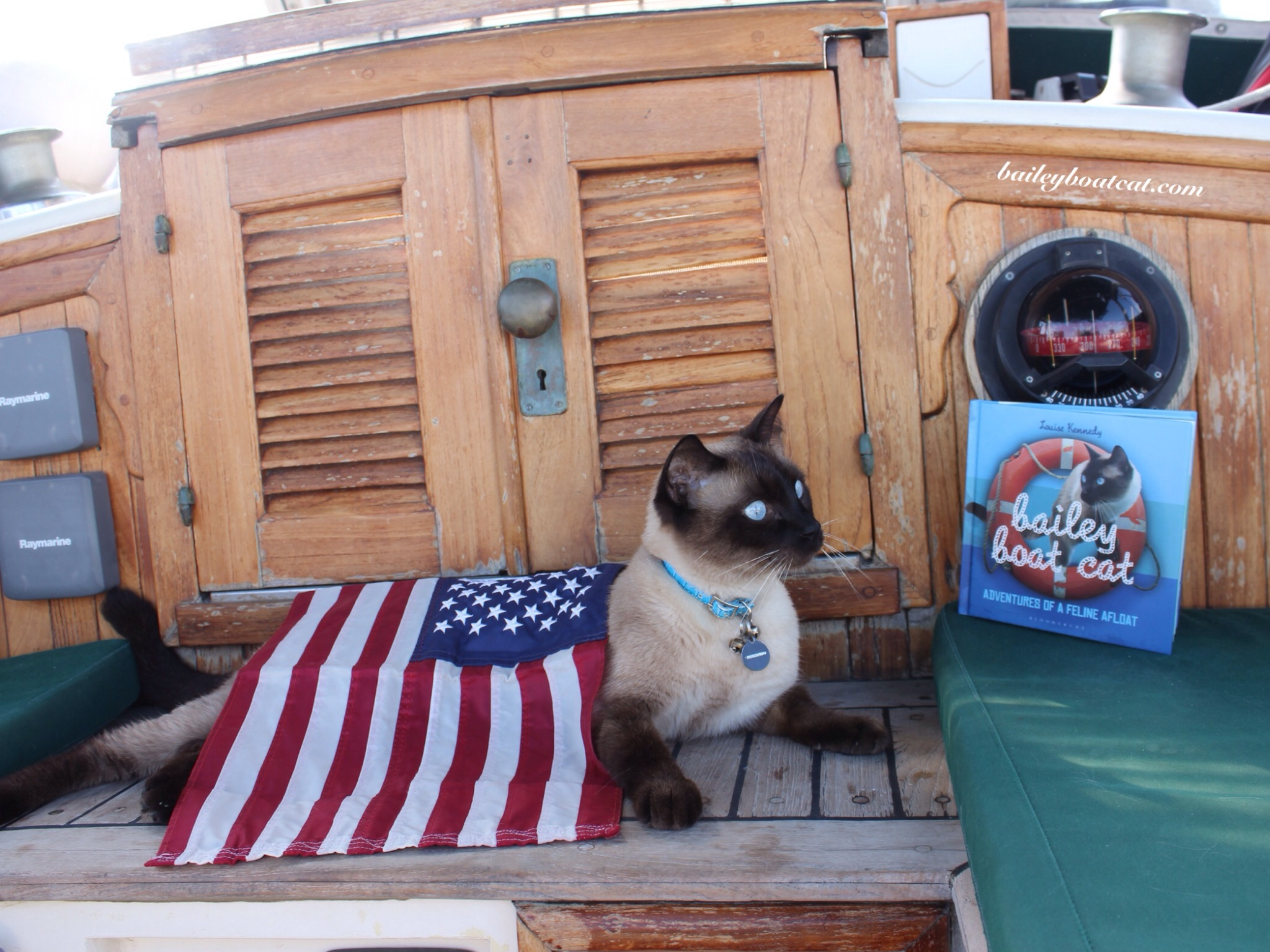 Happy 4th Of July Furiends!