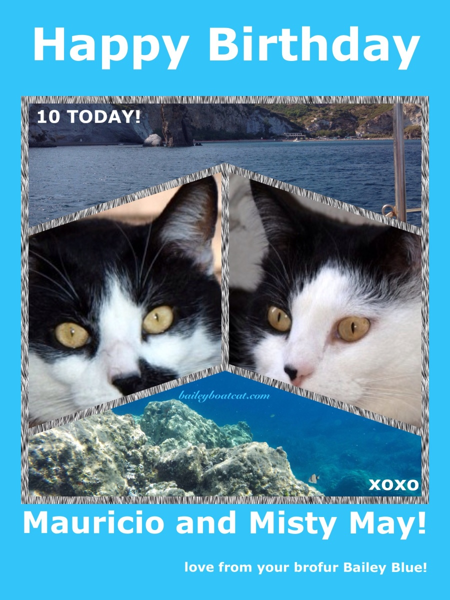 Happy Birthday Mauricio and Misty May!