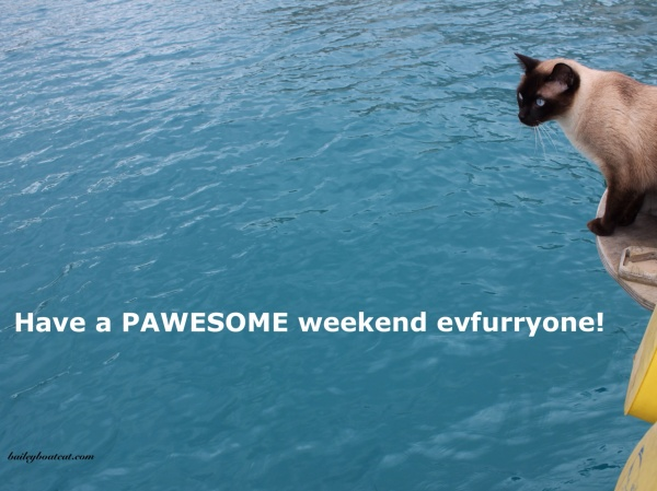Pawesome weekend!