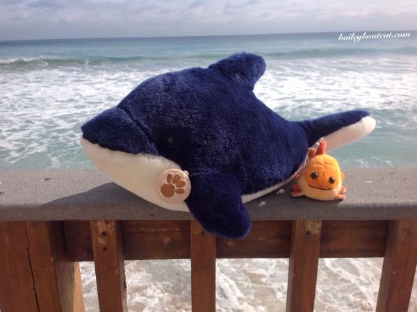 Ocean dwellers!