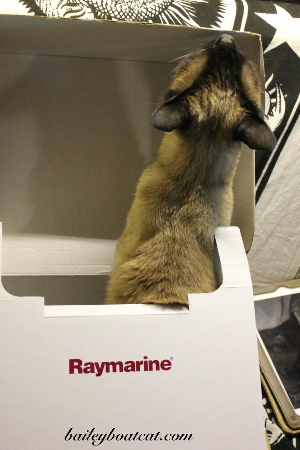 Raymarine box