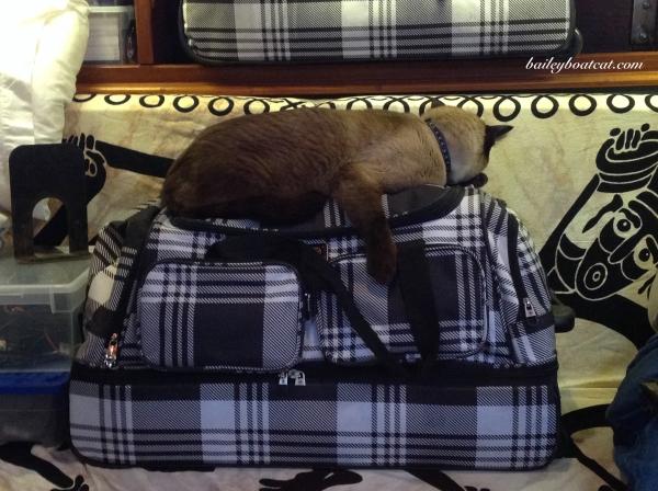 Comfy Suitcase