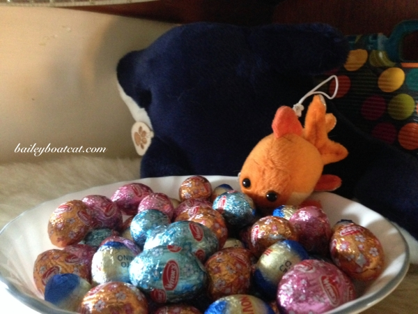 Sharkie and Blue's Easter Eggs!