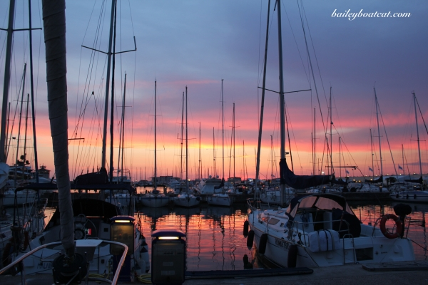 Sunset in the marina!