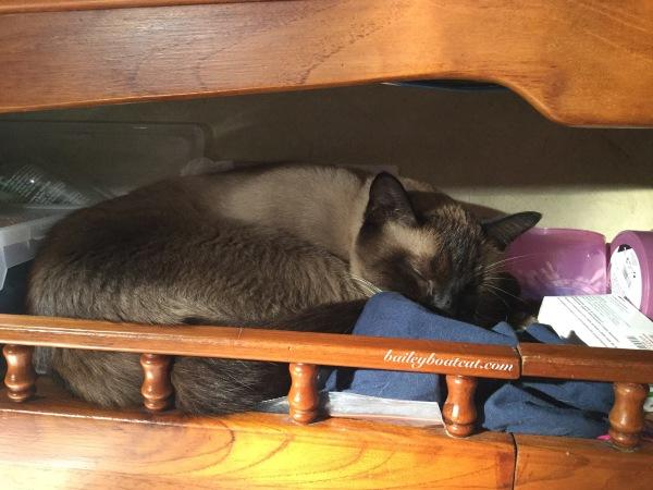 Comfortable cosy spot