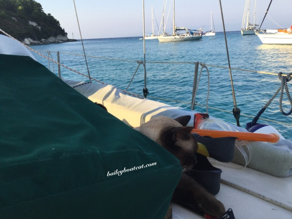 Sleeping with snorkelling gear