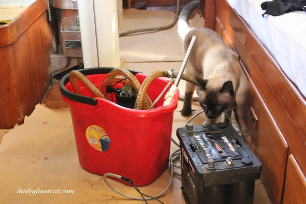 Snifffing the equipment