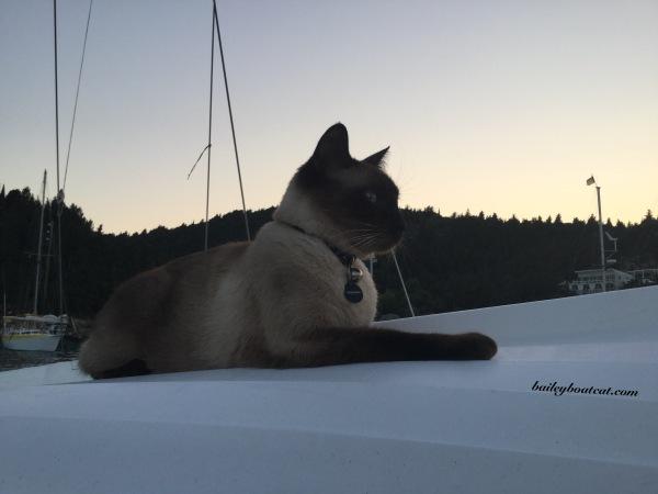 Dusk on the dinghy