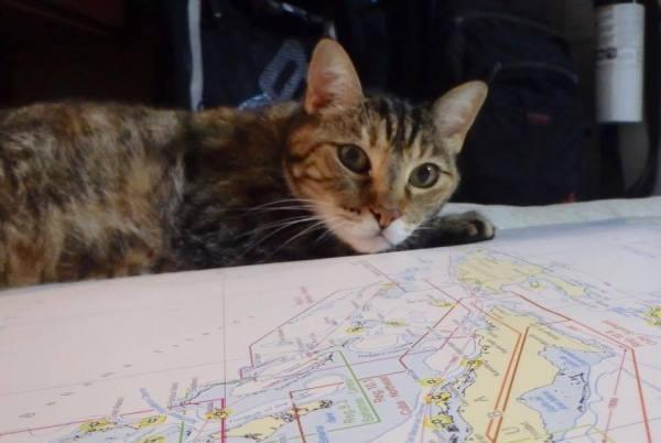 Jezabelle passage planning!