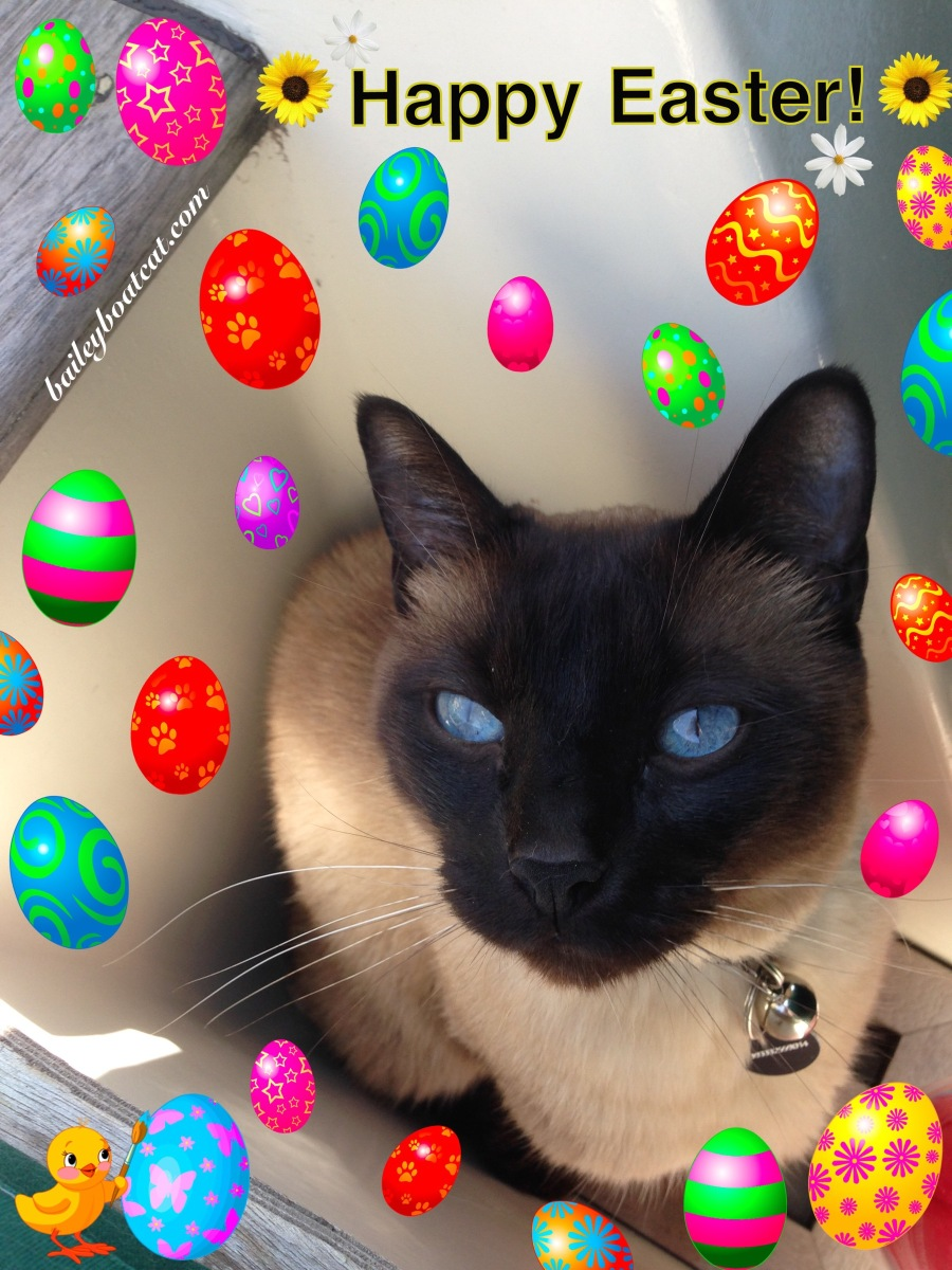 Happy Easter Evfurryone and Happy 2nd Birthday April and Blue!