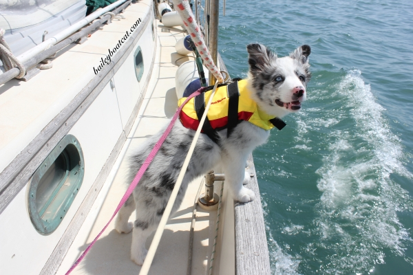 April's first sail