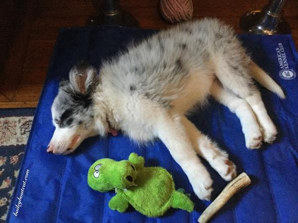 April asleep