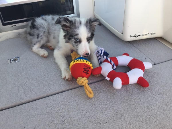 April and her new toys