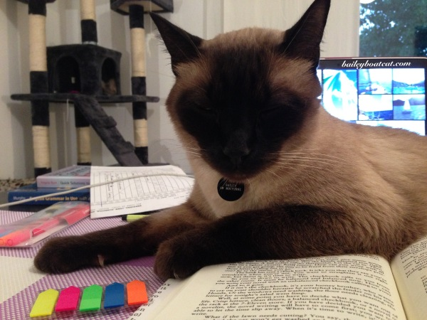 Helping with reading