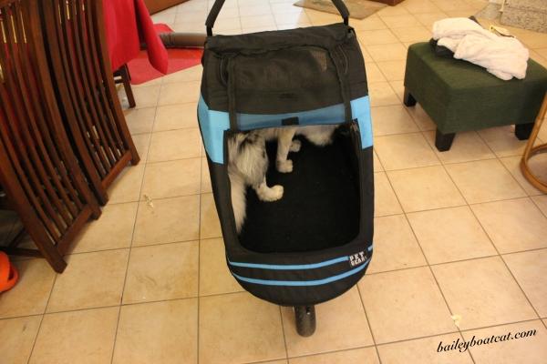 the-pet-stroller